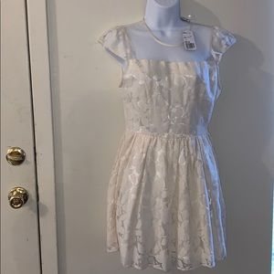 Nwt forever 21 cream lace dress